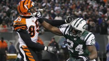 Ochocinco-revis01_576_display_image