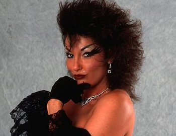 Sherri_martel_display_image