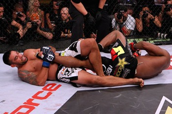 Werdum_display_image