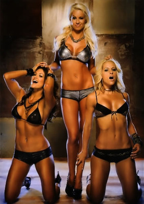 Maryse-eve-michelle-divas_display_image