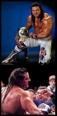 Britishbulldog_display_image