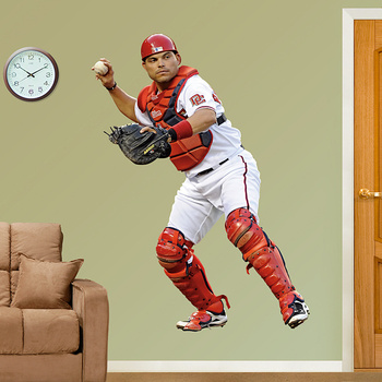 Pudge_display_image