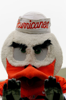 EL PASO, TX - DECEMBER 30:  Sebastian the Ibis of the Miami Hurricanes during play against the Notre Dame Fighting Irish at Sun Bowl on December 30, 2010 in El Paso, Texas.  (Photo by Ronald Martinez/Getty Images)