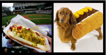 Hotdogf_display_image