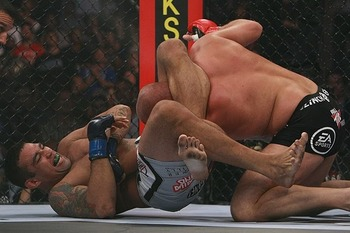 Werdum-vs-fedor_display_image