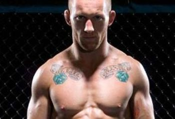 Gray_maynard_feature_display_image
