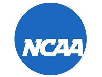 Ncaalogo_display_image