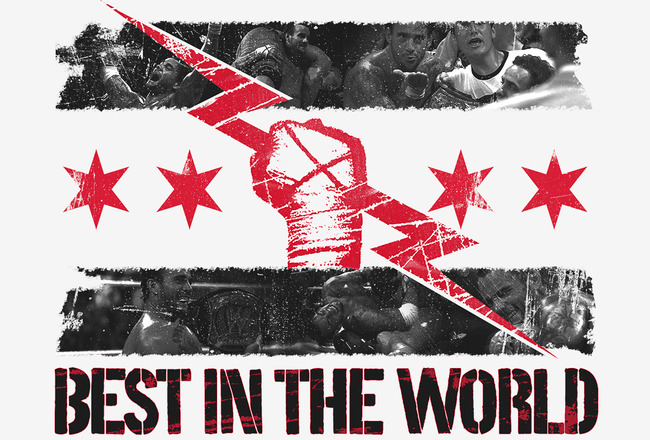 Official Fresh Joins or We Riot Thread - Page 6 Cm-punk-best-in-the-world-logo-wallpaper-1280x1024_crop_650x440