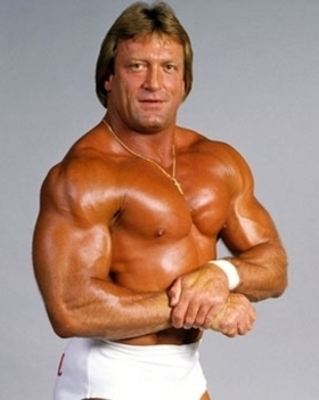 Best-of-mr-wonderful-paul-orndorff-10-discs-free-postage-0baf7_display_image