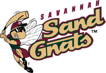 Savannahsandgnats_display_image