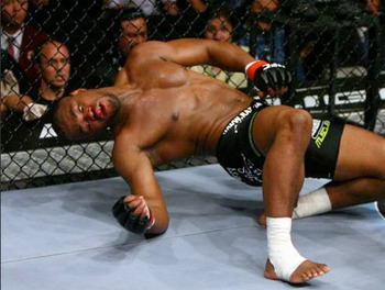 Rashad_evans_display_image