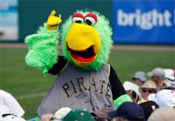 Pirateparrot_display_image