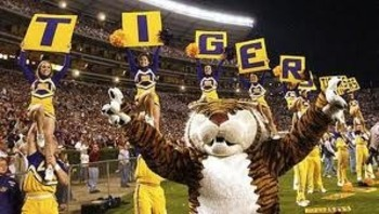Lsu1_display_image