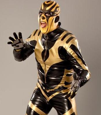 Goldust-4_display_image