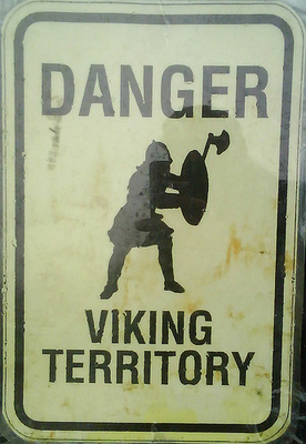 Viking_display_image