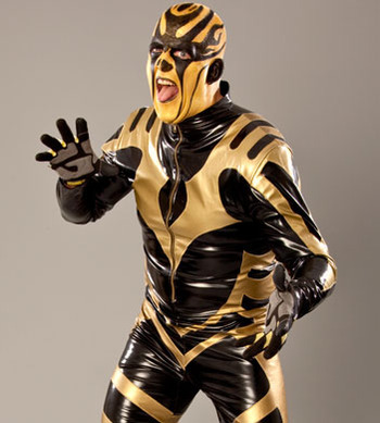 20101102_goldust_display_image_display_image