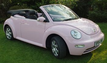 Beetle_display_image