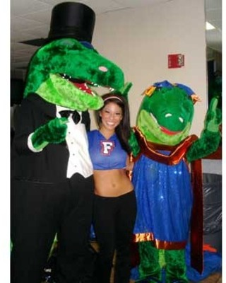 4gator4_original_display_image