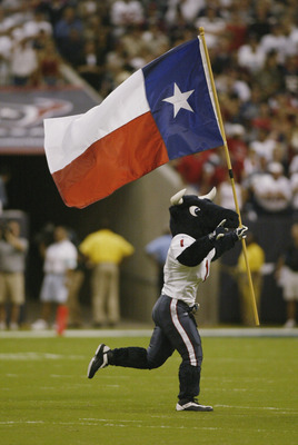 HOUSTON, TX - SEPTEMBER 8:  Mascot Toro of the Houston Texans runs with the Texas state flag during the NFL game against the Dallas Cowboys on September 8, 2002 at Reliant Stadium in Houston, Texas. The Texans won their first regular season game 19-10.  (