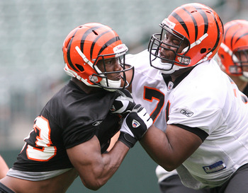 CINCINNATI, OH - MAY 1:  Cincinnati Bengals first round draft pick Andre Smith #71, right, battles withthird round draft pick Michael Johnson #93 during rookie minicamp at Paul Brown Stadium on May 1, 2009 in Cincinnati, Ohio.  (Photo by Mark Lyons/Getty
