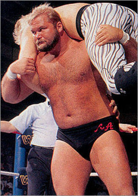 Arn-anderson_display_image