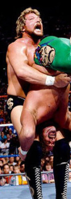 Aahf151_8x10-no355ted-dibiase-posters_display_image