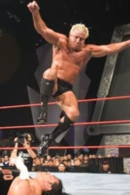 Ric_flair_profile_display_image