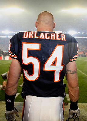 435882-brian_urlacher_chicago_bears_display_image