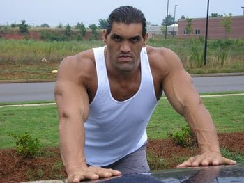 The-great-khali-indian-wrestler-36_display_image