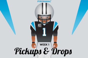 Cam-newton-pickups-and-drops-large_display_image