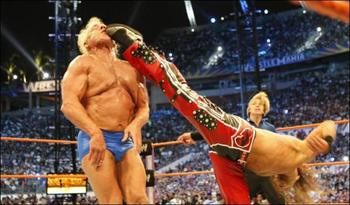 Flair_vs_hbk_display_image