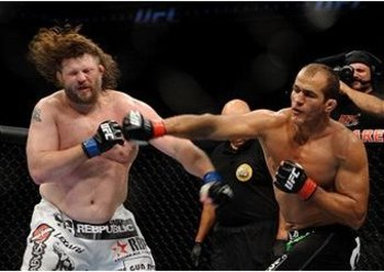 Roy-nelson-junior-dos-santos_display_image