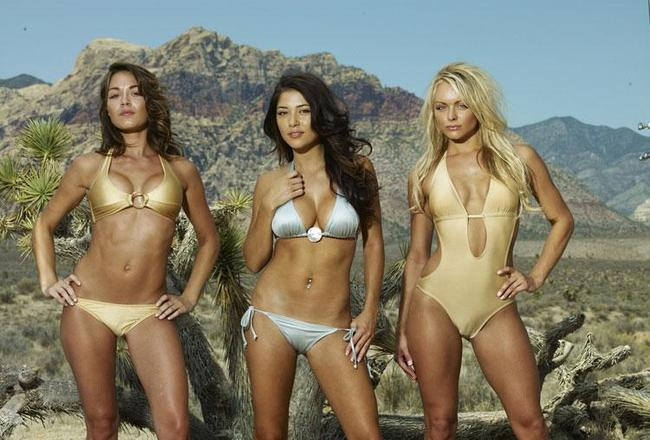 Ufc-ring-girls-mma-719229_750_526_crop_650x440