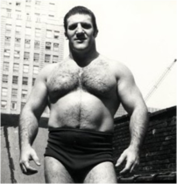 Bruno_sammartino_1_display_image