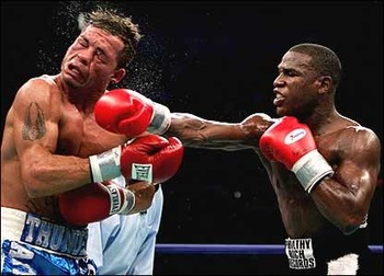 Gattimayweather_display_image