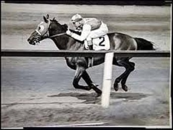 Seabiscuit_display_image