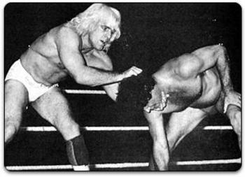 Flair-ric-and-brisco-jack01_display_image
