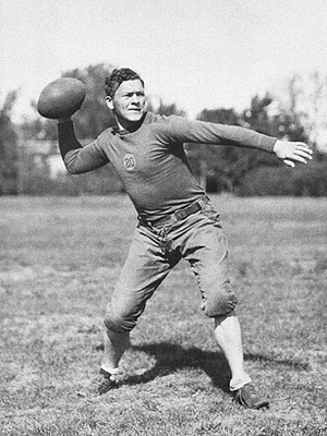 Curly_lambeau_display_image