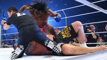 Sokoudjou_nortje_display_image