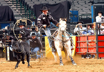 Trevor_brazile_display_image