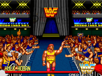 Wrestlefest_display_image
