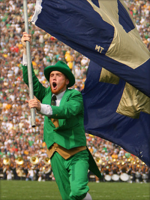 Leprechaun_display_image