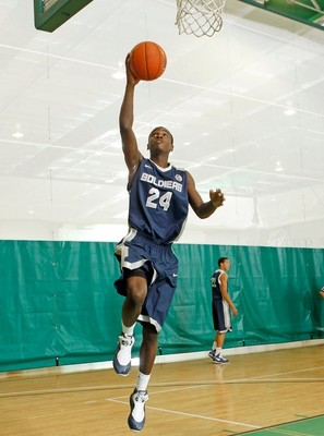 20110409-jabari-bird426_display_image