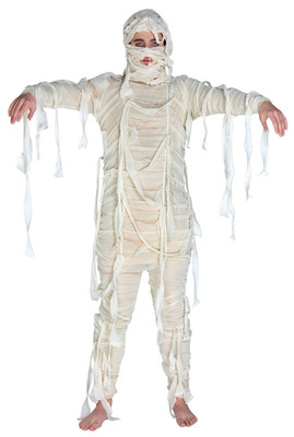 7004-adult-mummy-costume-large_display_image