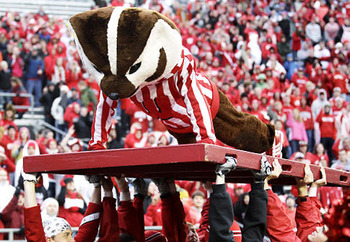 Alg_bucky_badger_display_image