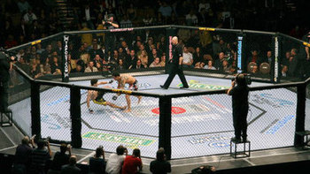 Ufc_octagon_display_image