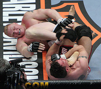 Mir-lesnar_display_image