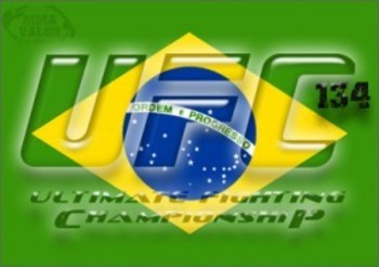 Brazilflag-ufc-134-285x200_display_image