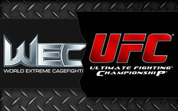Ufc-wec_display_image