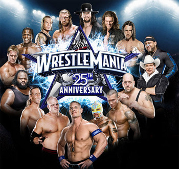 Wrestlemania_25_display_image